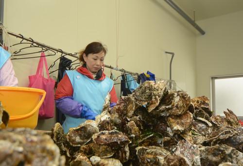 Berbekal Semangat dan Keramahan 'Lady Oyster' Hadapi Musibah Tsunami